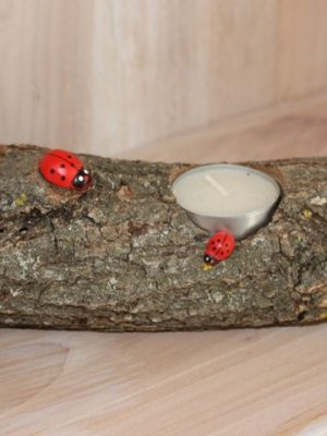 Tronchetto tealight 2coccinelle